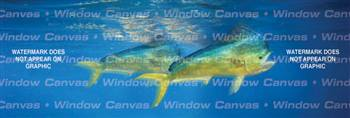 Mahi Mahi Sporting Life Rear Window Graphic