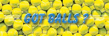 Got Balls? Sporting Life Rear Window Graphic