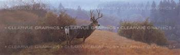 Autumn Haze Wildlife Rear Window Graphic