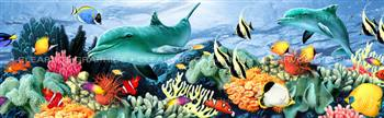 Coral Reef Wildlife Rear Window Graphic
