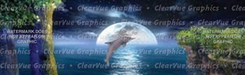 Jumping Dolphin Wildlife Rear Window Graphic