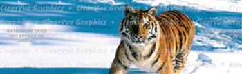 Snow Tiger Wildlife Rear Window Graphic