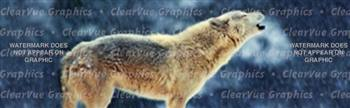 Wolves 2 Wildlife Rear Window Graphic