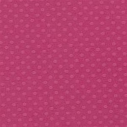 Bazzill Dotted Swiss Cardstock - Pirouette