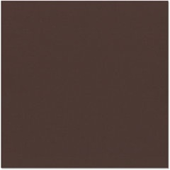 Bazzill - 12x12 Textured Cardstock Mud Pie