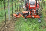 Lotti IT15E Side Trim Rotary Mower