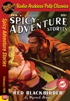 Spicy Adventure Stories eBook February 1938
