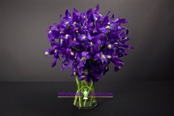 """Sapphire Stone"" Iris Arrangement - Set of 12 (vases included)"