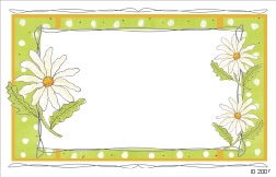 Drawn white daisies with green border (Pack of 50 enclosure cards)