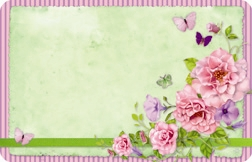 Green with flowers, butterflies, & pink border (Pack of 50 enclosure cards)