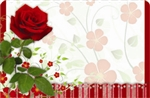 Red rose with scalloped border (Pack of 50 enclosure cards)