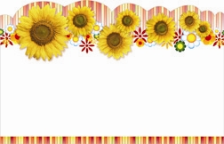 Sunflowers with scalloped border (Pack of 50 enclosure cards)