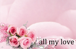 """All My Love"" : Pink rose/Pink bckgrnd (Pack of 50 enclosure cards)"