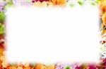 Floral border (Pack of 50 enclosure cards)