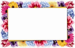 Floral border full die-cut (Pack of 50 enclosure cards)