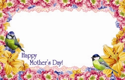 """Happy Mother's Day"" : Green birds flower border (Pack of 50 enclosure cards)"