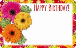 """Happy Birthday"" : Gerbera mix w/border (Pack of 50 enclosure cards)"