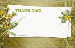"""Thank You"" : Sage bckgrnd faffia tied dried flowers (Pack of 50 enclosure cards)"