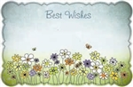 """Best Wishes"" : Daisies on green grass (Pack of 50 enclosure cards)"