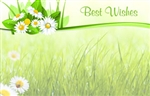 """Best Wishes"" : Grass & flower bundle top (Pack of 50 enclosure cards)"