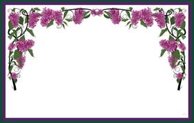 Lavendar wisteria (Pack of 50 enclosure cards)