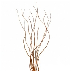 Curly Willow Branches, 3-4 feet tall (10 Bunches)