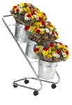 Fresh Flower Display with 3 Galvanized Buckets