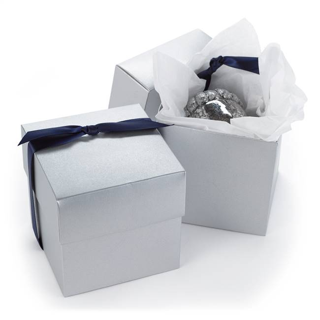 Two Piece Cup Cake Box - Silver Shimmer
