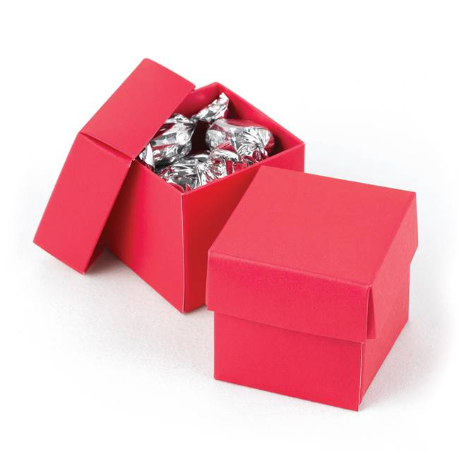 Fuchsia 2 piece Favor Boxes
