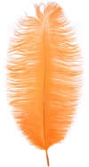 "17-21"" Ostrich Feathers - Orange (1/2 Pound)"