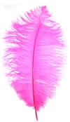"9-13"" Ostrich Feathers - Hot Pink (1/2 Pound)"