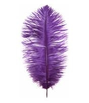 "19-24"" Ostrich Feathers - Purple (1/2 Pound)"