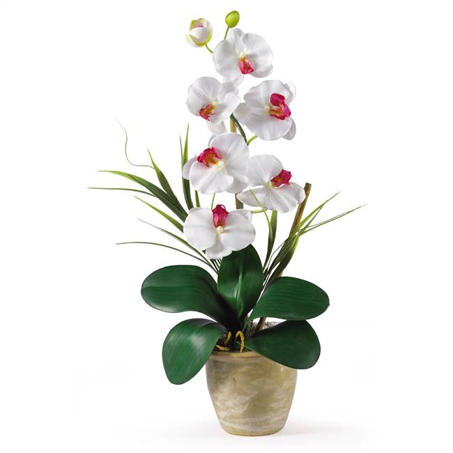Single Stem Phalaenopsis Silk Orchid Arrangement