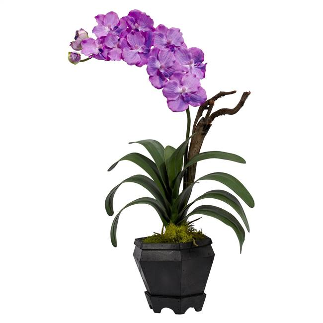 Vanda w/Black Hexagon Vase Silk Arrangement