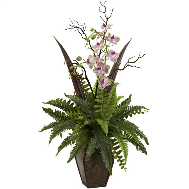 Fern & Orchid Arrangement
