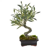 Mini Olive Artificial Bonsai Tree