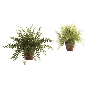Fern w/Decorative Planter (Set of 2)