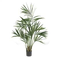 5' Kentia Palm Silk Tree