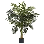 4' Golden Cane Palm Tree