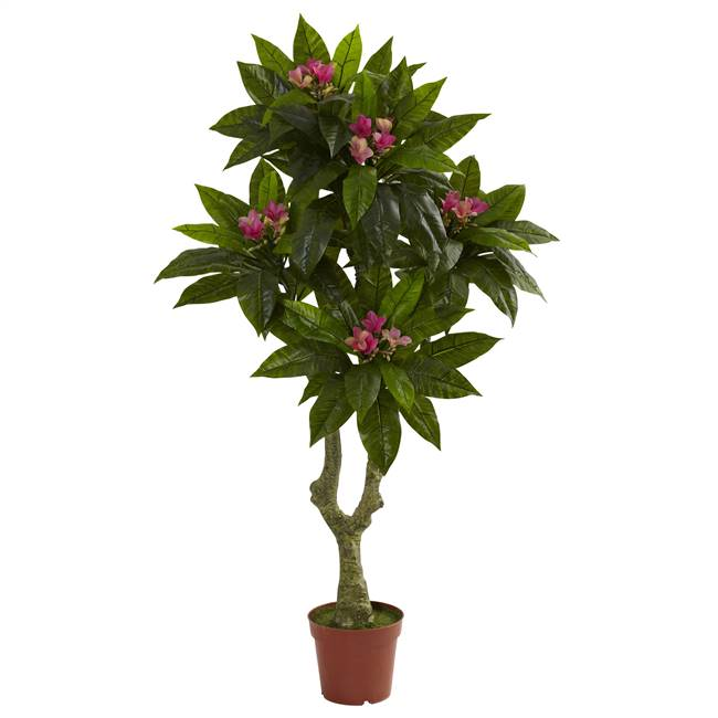 5' Plumeria Tree UV Resistant (Indoor/Outdoor)