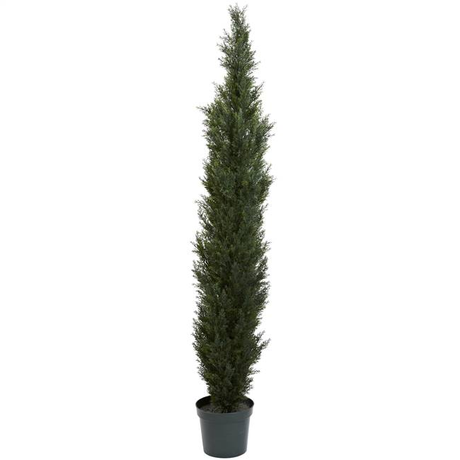 "7' Mini Cedar Pine Tree w/3614 Tips in 12"" Pot (Two Tone Green)"