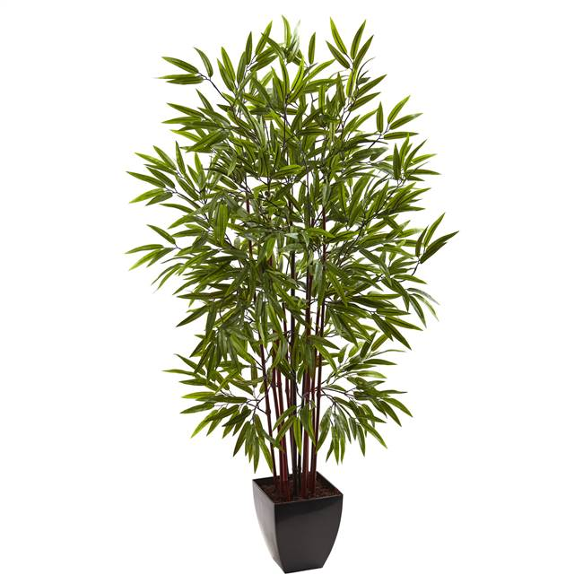 5' Bamboo Silk Tree w/Planter