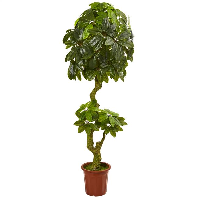 6' Schefflera Artificial Tree UV Resistant (Indoor/Outdoor)