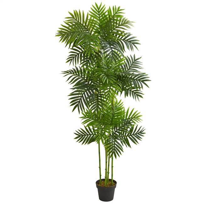 6' Phoenix Palm Artificial Tree