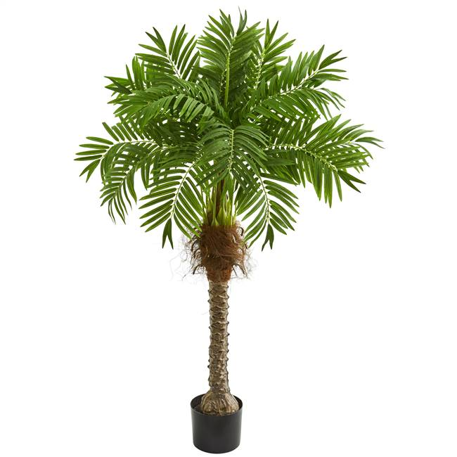 "58"" Robellini Palm Artificial Tree"