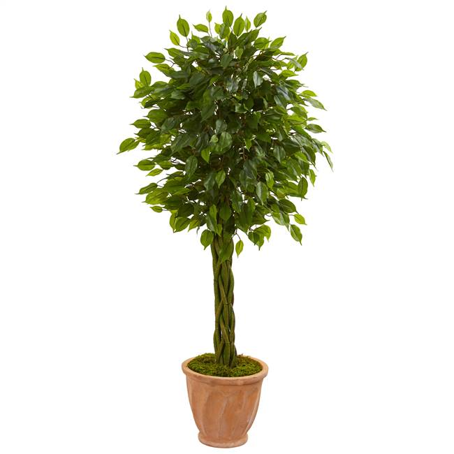 4' Braided Ficus Artificial Tree in Terracotta Planter UV Resistant (Indoor/Outdoor)