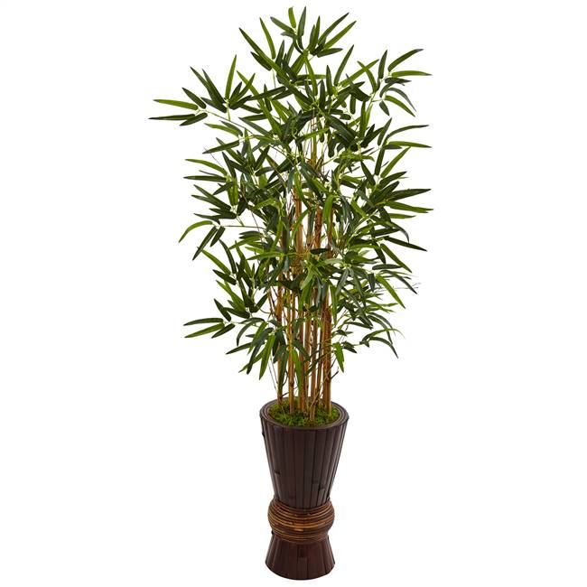 4.5' Bamboo Tree in Bamboo Planter
