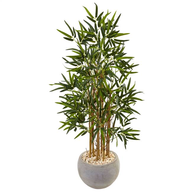 4' Bamboo Tree in Sand Colored Bowl