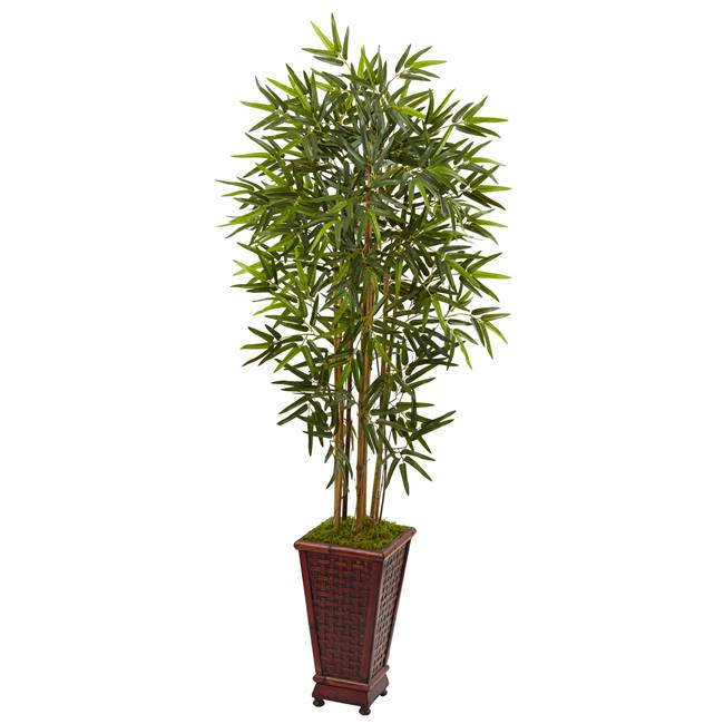 5' Bamboo Tree in Decorative Planter