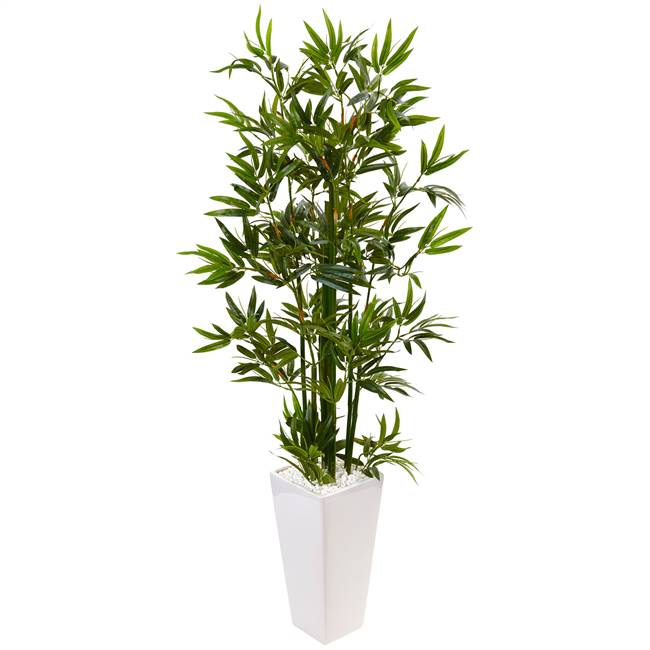 4.5' Bamboo Tree in White Tower Planter